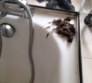 blocked drain in bath - need a plumber